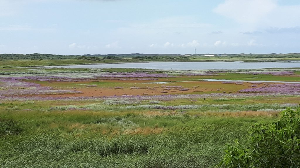 Het kleurrijke eiland, Vlieland